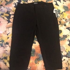 Brand New Plus Size Trouser